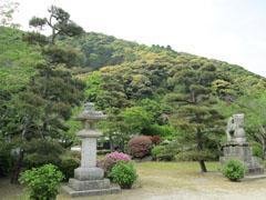 吉香公園でお花見3