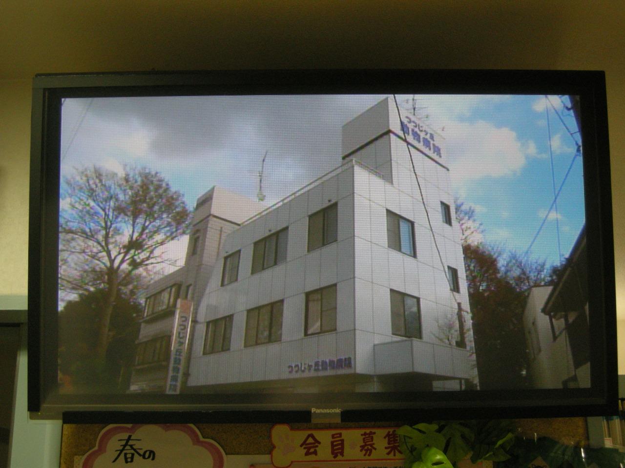ラルフ☆デビュー作3