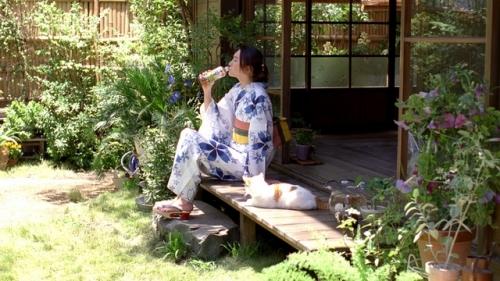 ガッキー浴衣姿にネコもくぎ付け? … 新垣結衣 7年連続「十六茶」CM出演1