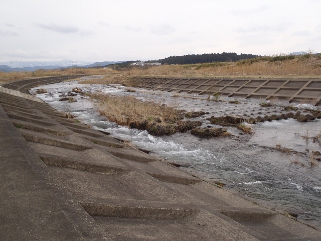 2015年4月保野川下流部
