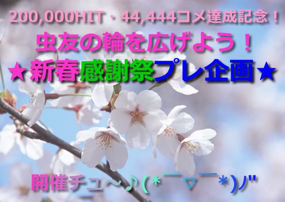 img_0_m.jpg