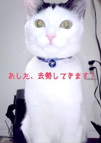2015-03-23-20-00-17_deco-.jpg