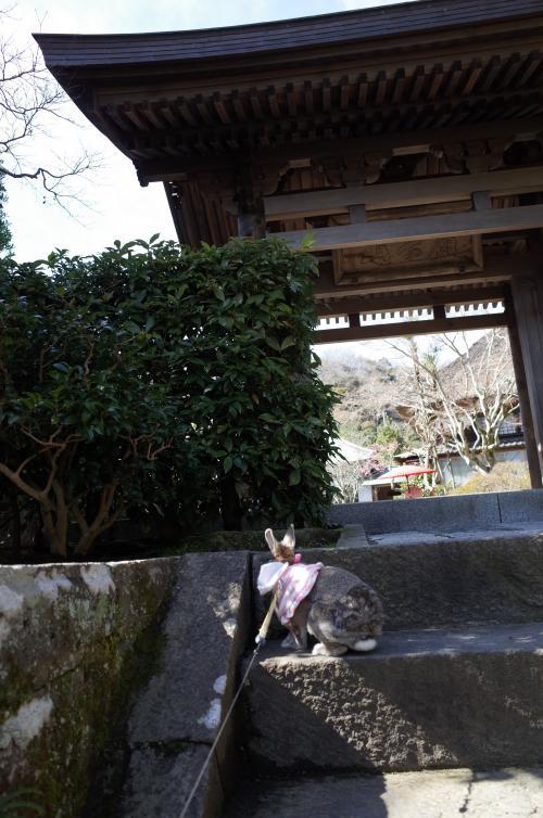 海蔵寺♪入ろう!