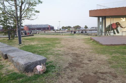 公園、綺麗になったね♪