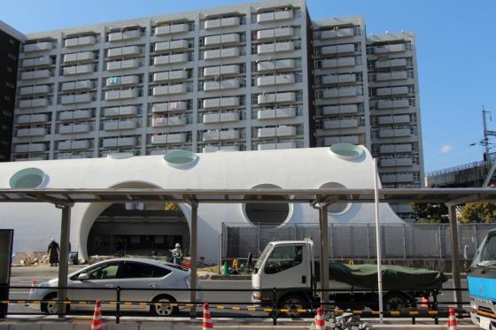 201503hakushima1-11.jpg