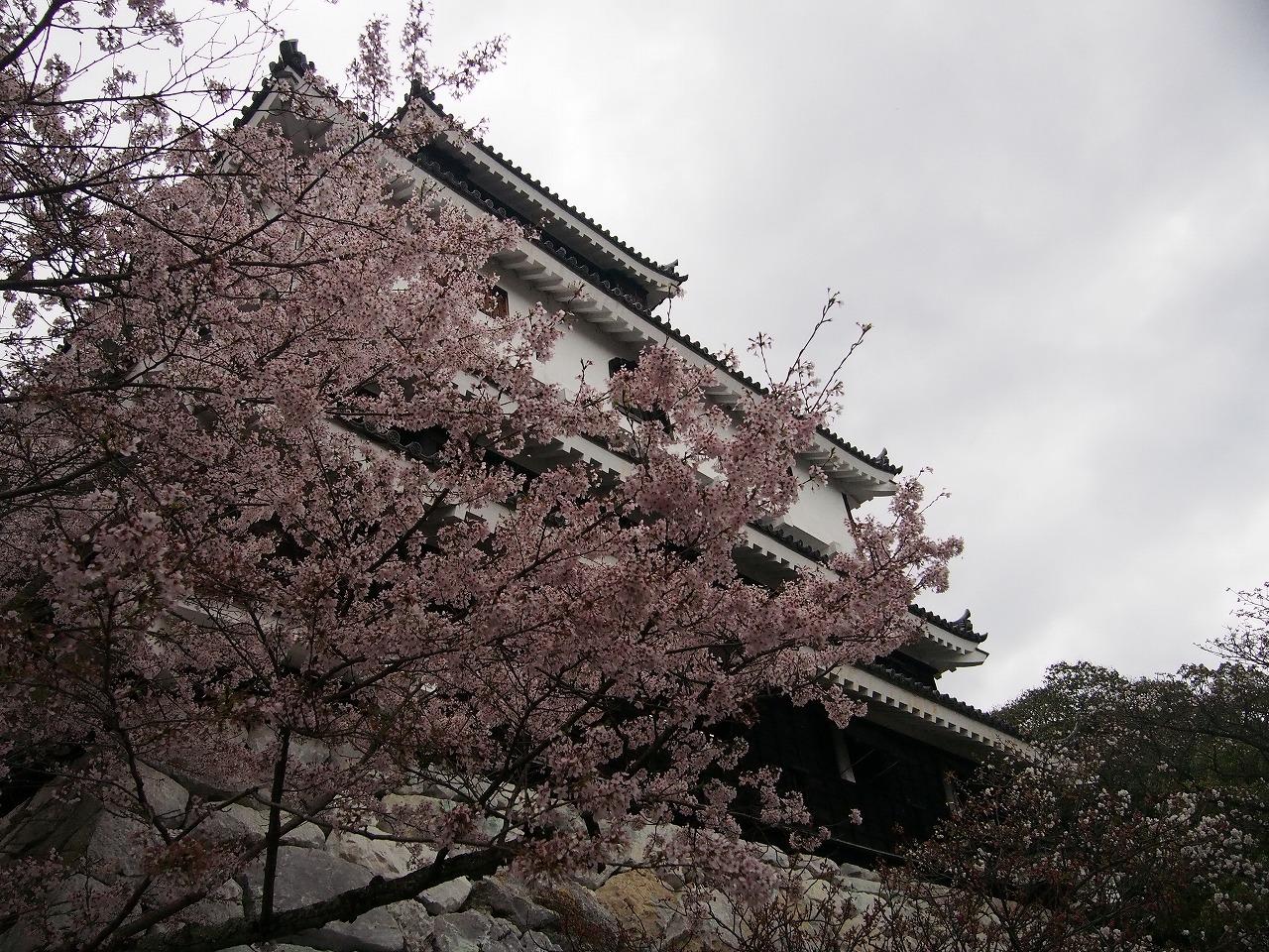 Kintaikyo_20150405-14.jpg