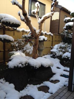 yuki2_convert_20150106115857.jpeg