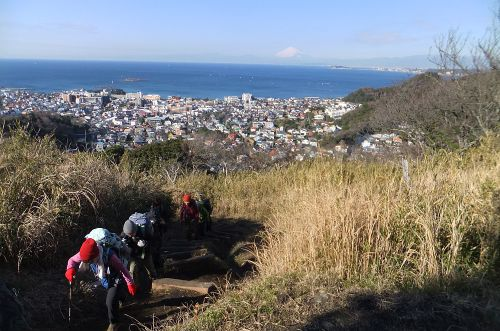 仙元山への登り