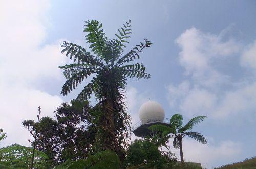 山頂付近のドーム