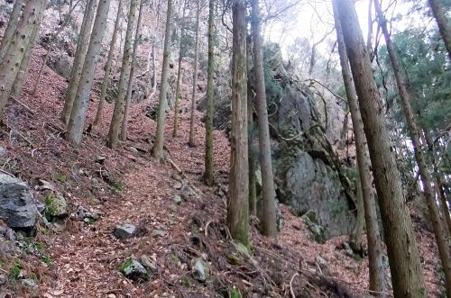 岩が多い斜面