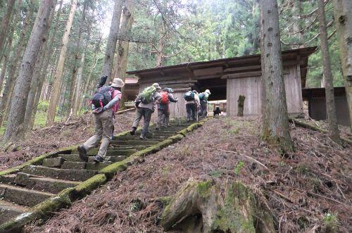 栗生神社の苔むした石段