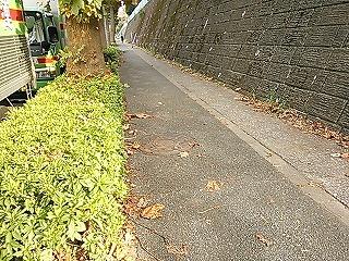 hirasegawagen1-8.jpg