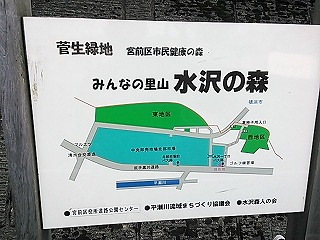 hirasegawagen1-9.jpg