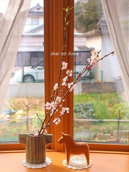 今日の出窓