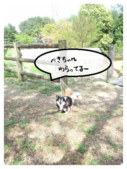 CYMERA_20150418_212237.jpg