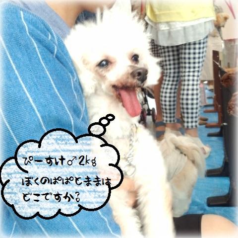 CYMERA_20150429_200554.jpg