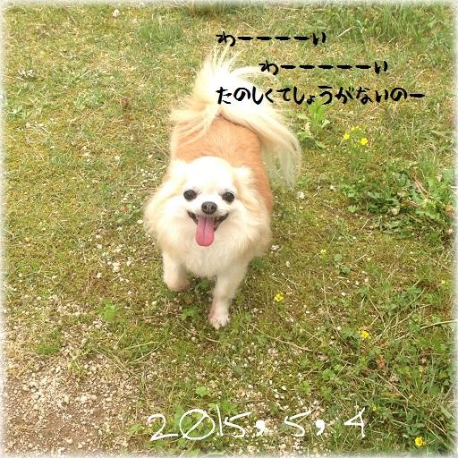 CYMERA_20150504_213745.jpg