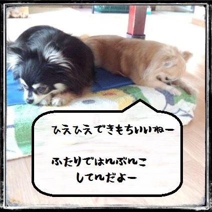CYMERA_20150531_141144.jpg
