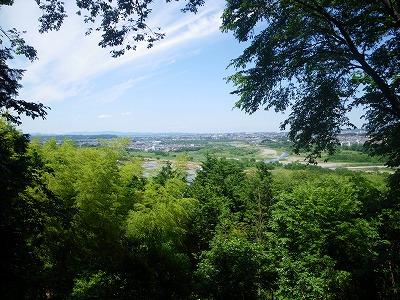 多摩川を見下ろす