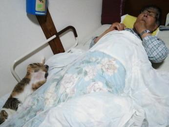 父と寝る「里」