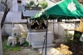 船詰神社19