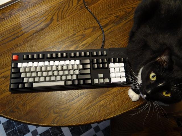 Mechanical_Keyboard48_67.jpg