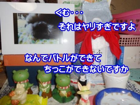 0821-07_20150821144640d4a.jpg