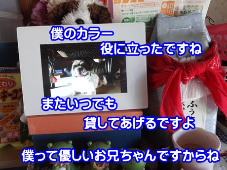 0827-08_201508271536385f4.jpg