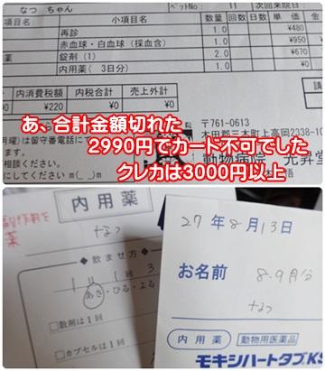 0813-光昇堂