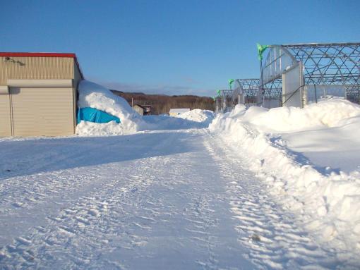 20150125_除雪後