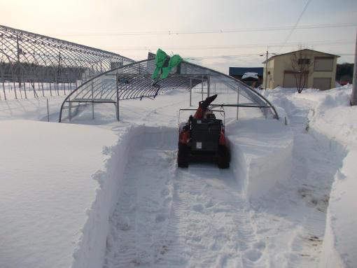 20150305_除雪開始