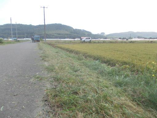 20150829_草刈り1