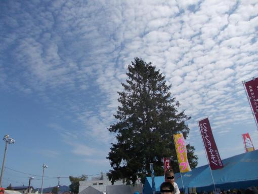 20150830_うどんまつり3