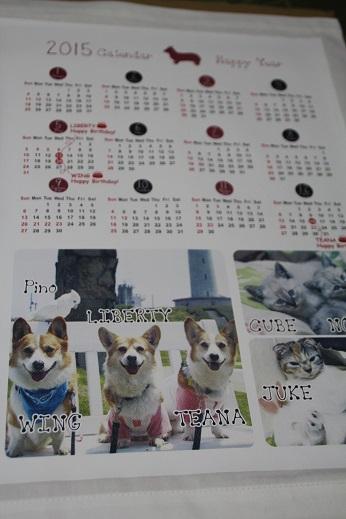 平尾台とうまうま 2014-12-14-5