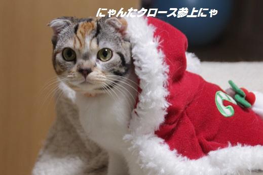 クリスマスイブ 2014-12-24-1