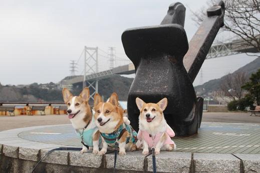 めかり 2014-12-31-4