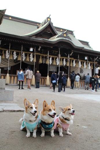 八坂神社 2015-1-5-2