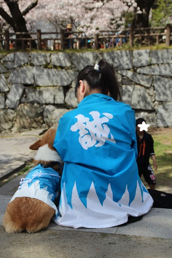 小倉城1 2015-3-30-6