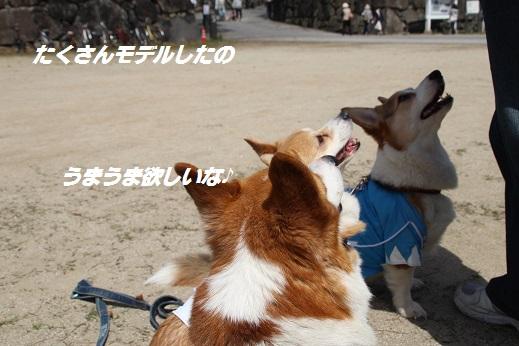 小倉城2 2015-3-30-3