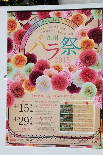 バラ祭 2015-4-25-1