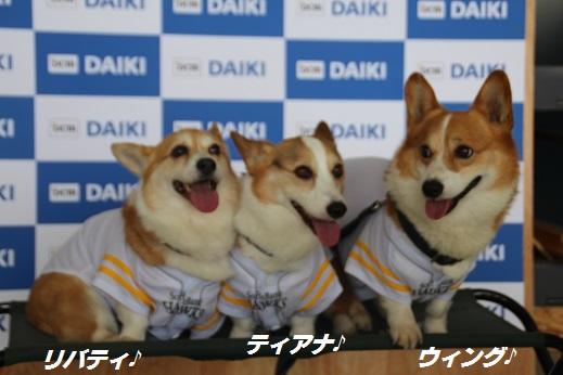 ダイキ 2015-5-30-3