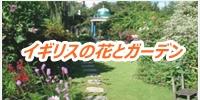 Excel exp flower garden