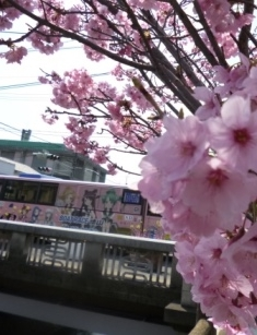 P1050706徳山競艇バス3