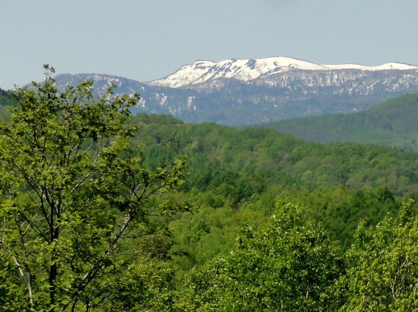 2すずらんの丘展望台からの漁岳