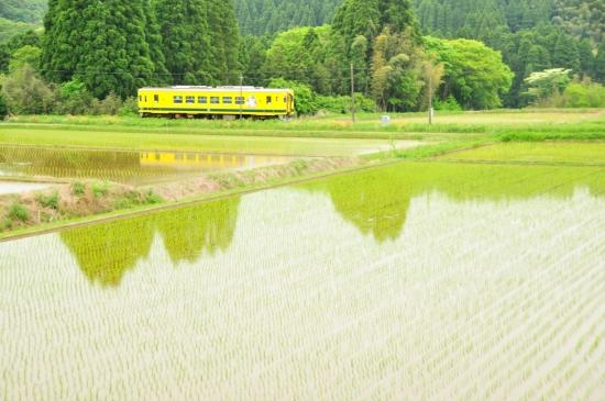 いすみ鉄道 246