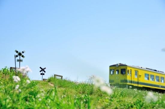 いすみ鉄道 419