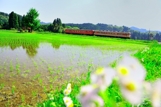 いすみ鉄道 650