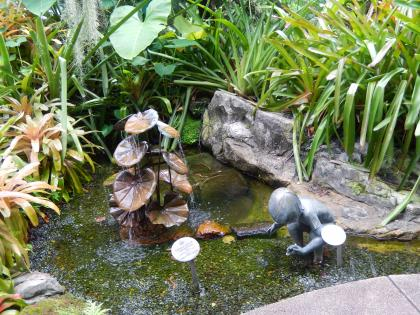 シンガポール2015.2植物園ラン園