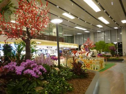 シンガポール2015.2チャンギ空港出発