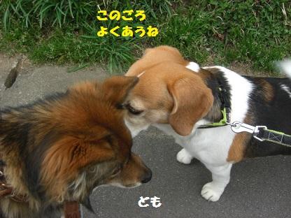 CIMG6396.jpg